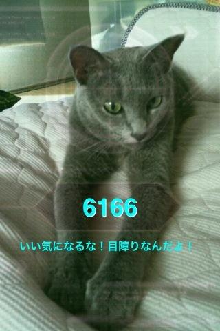 画像 055.jpg